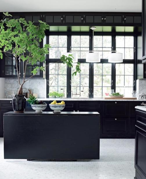 Deco bonsaï dans une cuisine