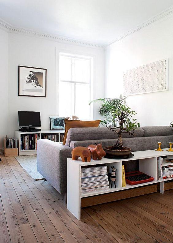 Décoration d'un salon avec un bonsai