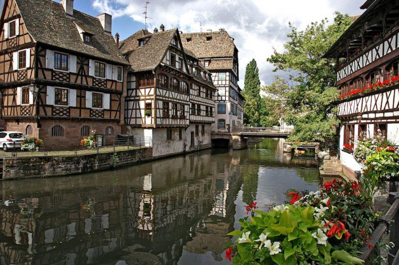 Bonsai Strasbourg (Bas-Rhin)