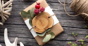 Idées de cadeau pour amateur de bonsai
